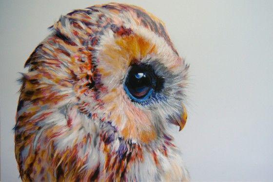 Beautiful owl [:
