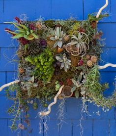 plant art - Google Search