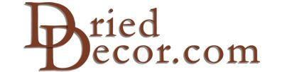 Dried Decor.com