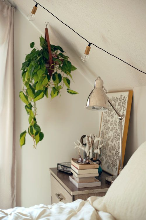 String Lights In Nursery : Bedroom Front rooms, Ideas for bedrooms and Plants