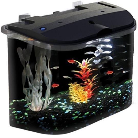 5 Gallon Big Fish Aquarium Kit Led Light Filter Starter Water Tank Lighting Kits Fishtank Aquariums Aquarium Kit Pet Fish 5 Gallon Aquarium
