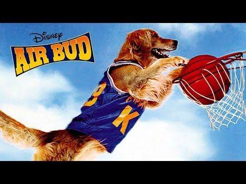 Air Bud Buddy Star Des Paniers Film Complet Gratuit En