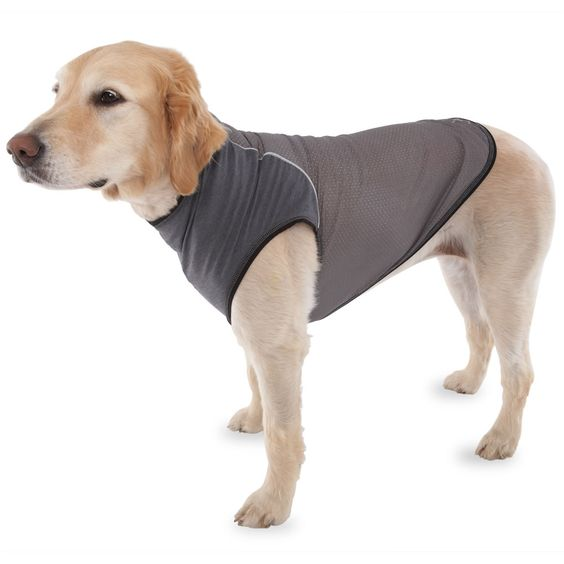 The Insect Repelling Canine Vest - Hammacher Schlemmer