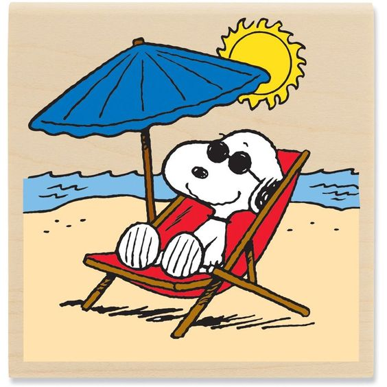 Ready to head to the Beach! Snoopy and the Gang Snoopy