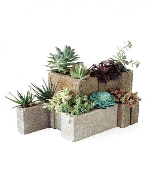 To make it, line the inside of cinder blocks with metal mesh, using gardening gloves to protect your skin against the mesh's sharp edges. Pour cactus soil onto the mesh, and place succulents inside the blocks. Set the blocks outside; water only during severe drought conditions.