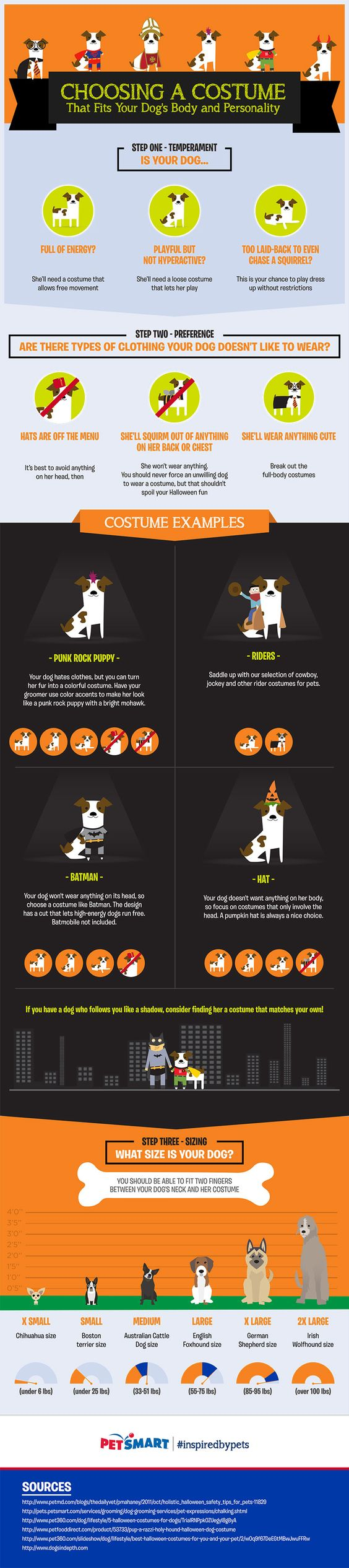 How to Choose Halloween Costumes for Dogs