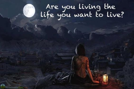 Você está vivendo a vida que você quer viver?