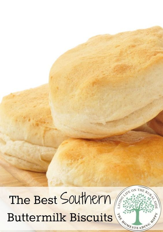 This is the last and only buttermilk biscuit recipe you will ever need again! Perfect with a shmear of butter or jam, or honey, or for biscuits and gravy, these will almost melt in your mouth! The Homesteading Hippy #homesteadhippy