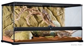 The Exo Terra Glass Terrarium is the ideal reptile or amphibian housing designed by European herpetologists