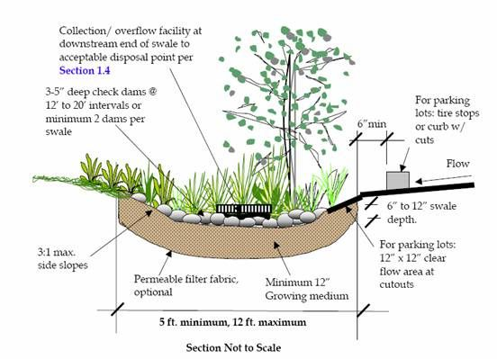 Street bioswale section google search scaping for Design of oxidation pond ppt