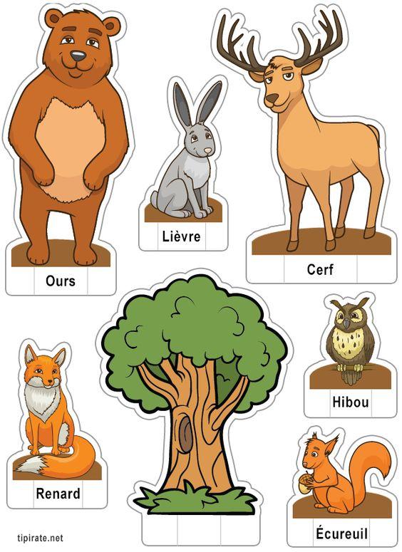 Apprendre les noms des animaux de la for t le li vre l 39 ours le hibou le renard l 39 cureuil - Se connecter a pinterest ...