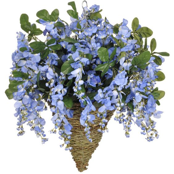 Artificial Wisteria Hanging Plant in Cone Basket ❤ liked on Polyvore featuring home, home decor, floral decor, wisteria silk flowers, faux floral, artificial flowers, faux floral arrangement and fake bouquets