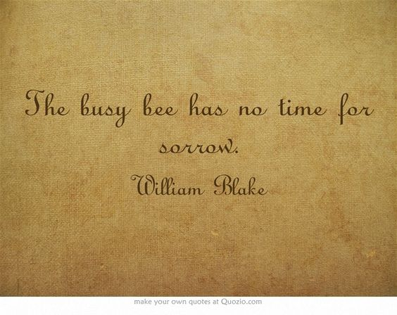 Essay On A Busy Bee Has No Time For Sorrow img-1