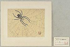 not identified - Spider (etching)