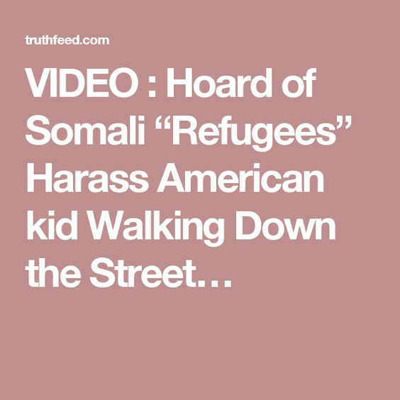 "VIDEO : Hoard of Somali ""Refugees"" Harass American kid Walking Down the Street…"