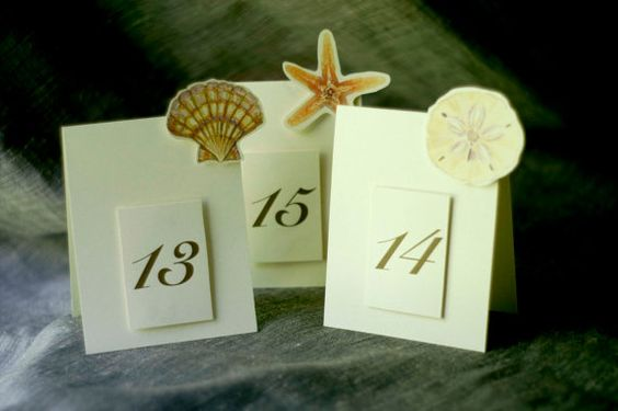 Table Numbers  Shells  Weddings Events   Paties  by jenAitchison, $22.50