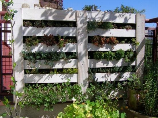 Möbel aus Holzpaletten-bauen vertikaler Garten
