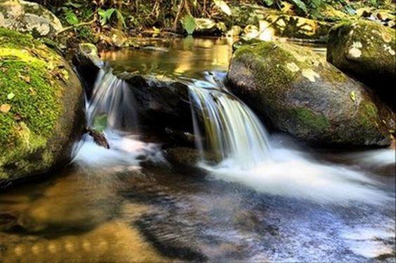 Parque Nacional Nascentes do Parnaíba, (Bahia, Tocantins, Piauí, Maranhão)