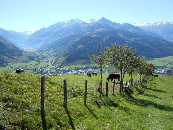 austria zellamsee österreich kaprun urlaub holiday