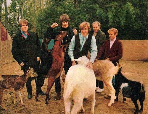 The Beach Boys at the Pet Sounds photoshoot 1966 - The Beach Boys