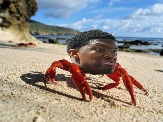 8392daea98aa716985b73ec5b24201dd jameis winston crab legs crab meme best 25 jameis winston crab legs ideas on pinterest jameis,Crab Legs Meme