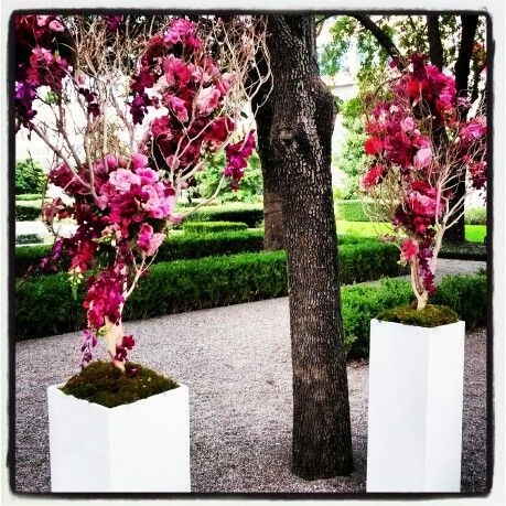 Wedding!  Manzanita & floral altar / ceremony pieces by Haute Floral at Marie Gabrielle in Dallas, TX.  www.hautefloral.com