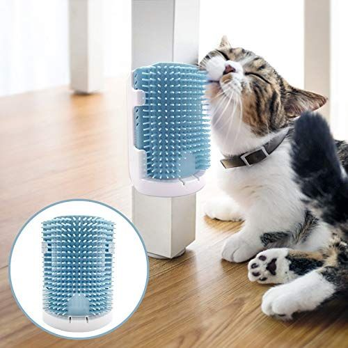 Amazon Com Starroad Tim Cat Self Groomer With Cathip Cat Self Grooming Corner Wall Brush Dog Cat Corner Groomer Wall Corner Massage Groomer Dog Cat Grooming