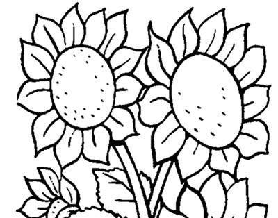 20 Gambar Taman Bunga Kartun Hitam Putih Lukisan Taman Bunga Tanpa Warna Cikimm Com Download Gambar Bunga Untuk Mewarn Di 2020 Fotografi Makro Bunga Lukisan Bunga