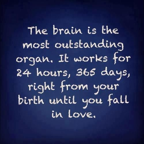 About the Brain & Love!!!    More on:    http://igg.me/p/179226?a=901297  http://www.its-hilarious.com/  http://itunes.apple.com/us/app/funny-hilarious-jokes/id492166165?ls=1=8