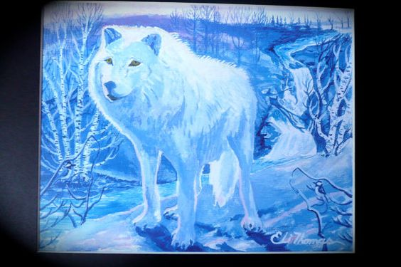 arctic white wolf native american art eli thomas art. Black Bedroom Furniture Sets. Home Design Ideas