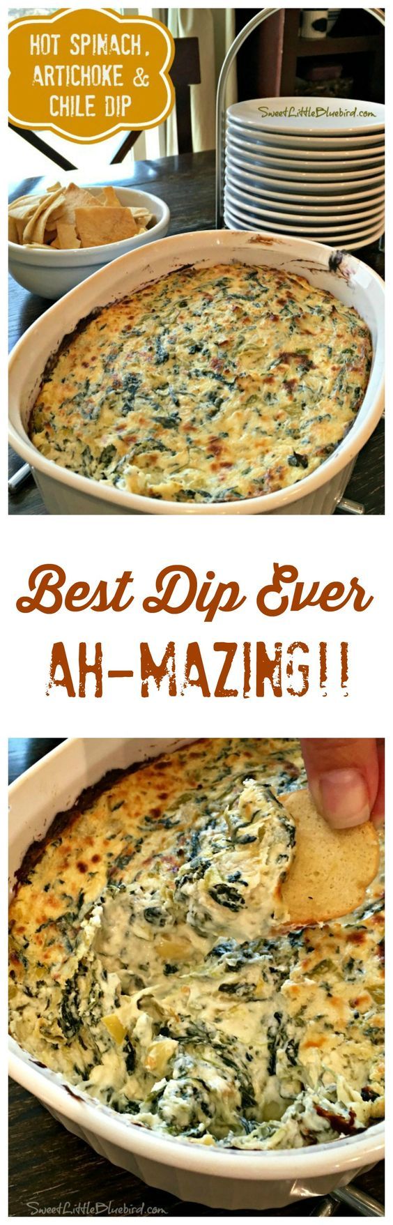HOT SPINACH, ARTICHOKE & CHILE DIP - Just one word to describe this awesome dip recipe...AH-MAZING!! The BEST Spinach Artichoke Dip I've ever had!! Simple to make too!!