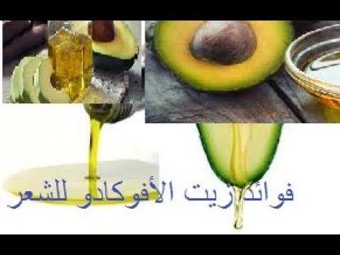 فوائد زيت الأفوكادو للشعر وطريقة استخدامه وصفة الأفوكادو للشعر الجاف Avocado Fruit Food
