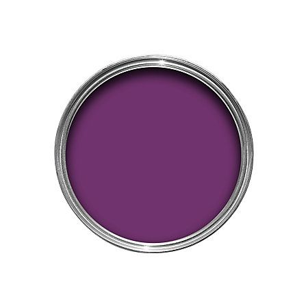 Dulux Made By Me Interior & Exterior Purple Passion Gloss Paint 250ml | Departments | DIY at B&Q