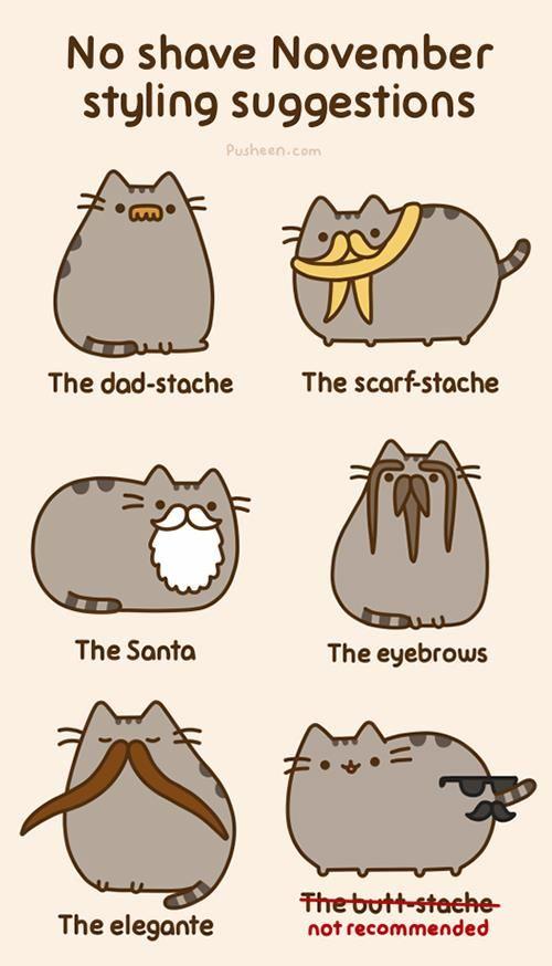 Pusheen Celebrity Cats