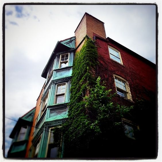"""Ivy creeping over an old building #Hagerstown MD #maryland #oldbuilding #instagood #iphoneography #jj #igers """