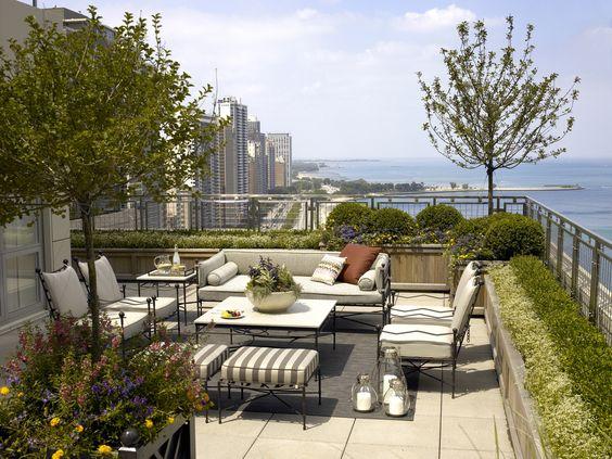 Roof top city garden. Wow!