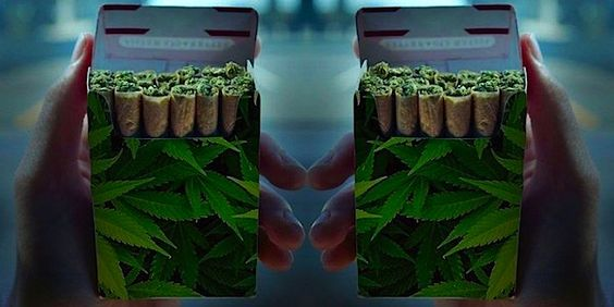 interesting article + points I've heard before, but still ring true!  Why We Need To Legalize Marijuana From The Perspective Of A Non-Smoker | Elite Daily
