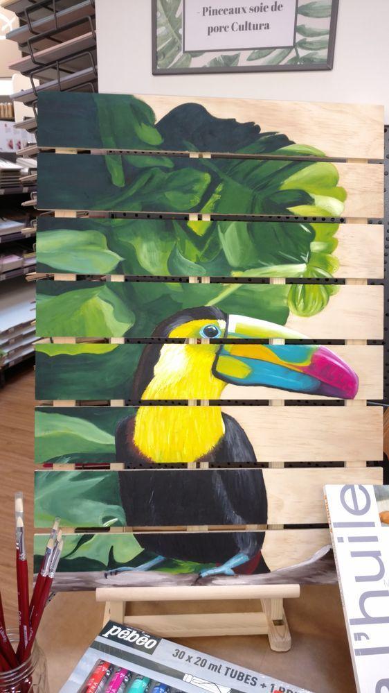 Toucan Peindre