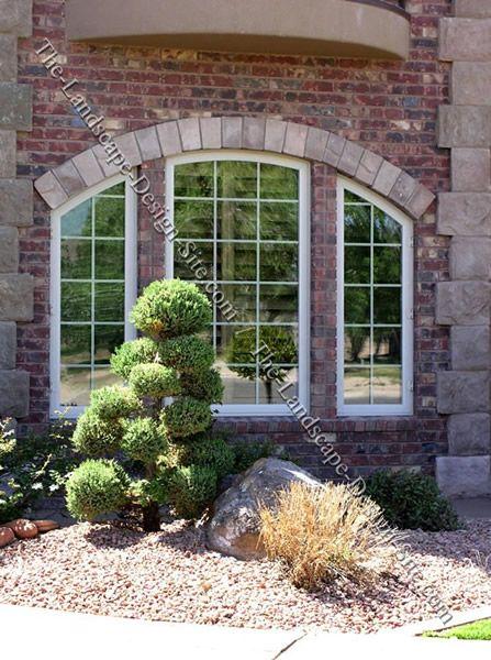 Front room window designs designing around windows for a for Window garden ideas india