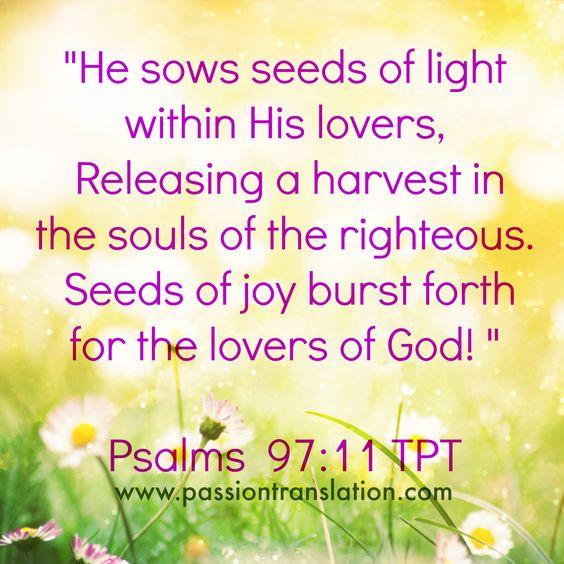 Psalms 97:11 TPT The Passion Translation