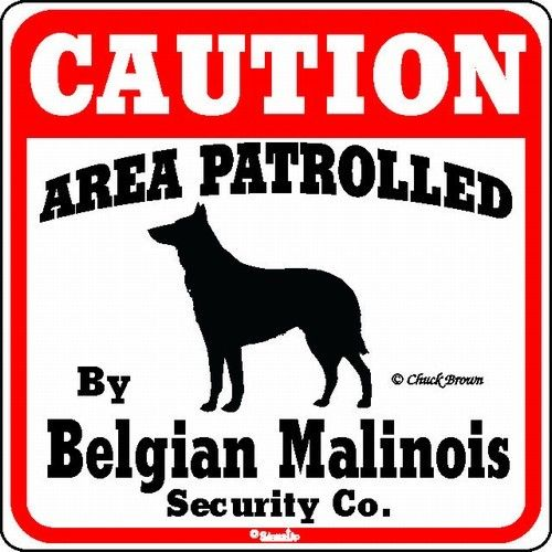Belgian Malinois Caution Sign The Perfect Dog Warning Sign Malinois Dog Warning Signs Dog Yard