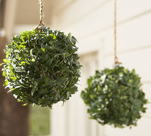 Live Ivy Kissing Ball | Pottery Barn