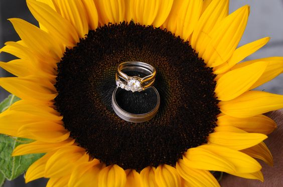 Reception, Flowers & Decor, Jewelry, yellow, gold, Flowers, Rings, Wedding, Sunflowers, Beautiful: