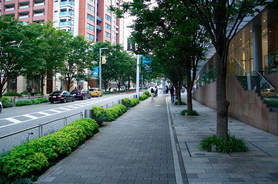 Calçadas arborizadas | Jardim das Ideias STIHL - Dicas de jardinagem e paisagismo