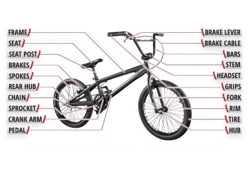 Bmx Bikes Everything You Need To Know