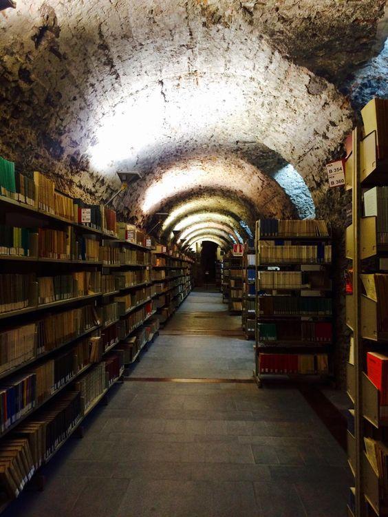 Monastero dei Benedettini, Catania: ibrary