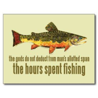 Funny posts and ice on pinterest for Funny fish sayings