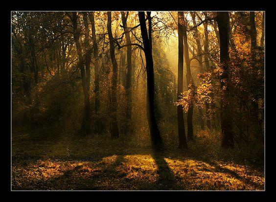 on the edge of dreamland by YoachimHUN on DeviantArt
