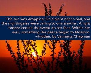 Excerpt from Hidden, Vannetta Chapman's upcoming romantic suspense novel.