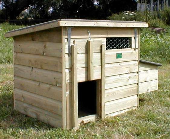 Duck coop coops and ducks on pinterest for Chicken and duck coop